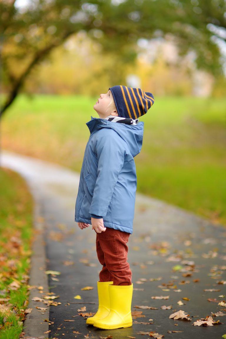 Dieťa, psychodiagnostika, diagnostika intelektu
